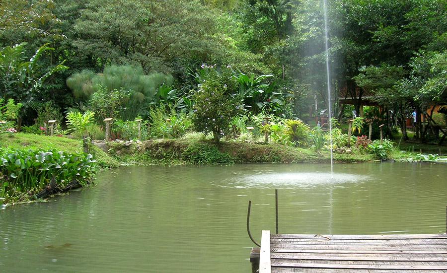 Biological Reserve Las Quebradas -FUDEBIOL